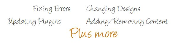 Fixing Errors Changing Designs Updating Plugins Adding/Removing Content